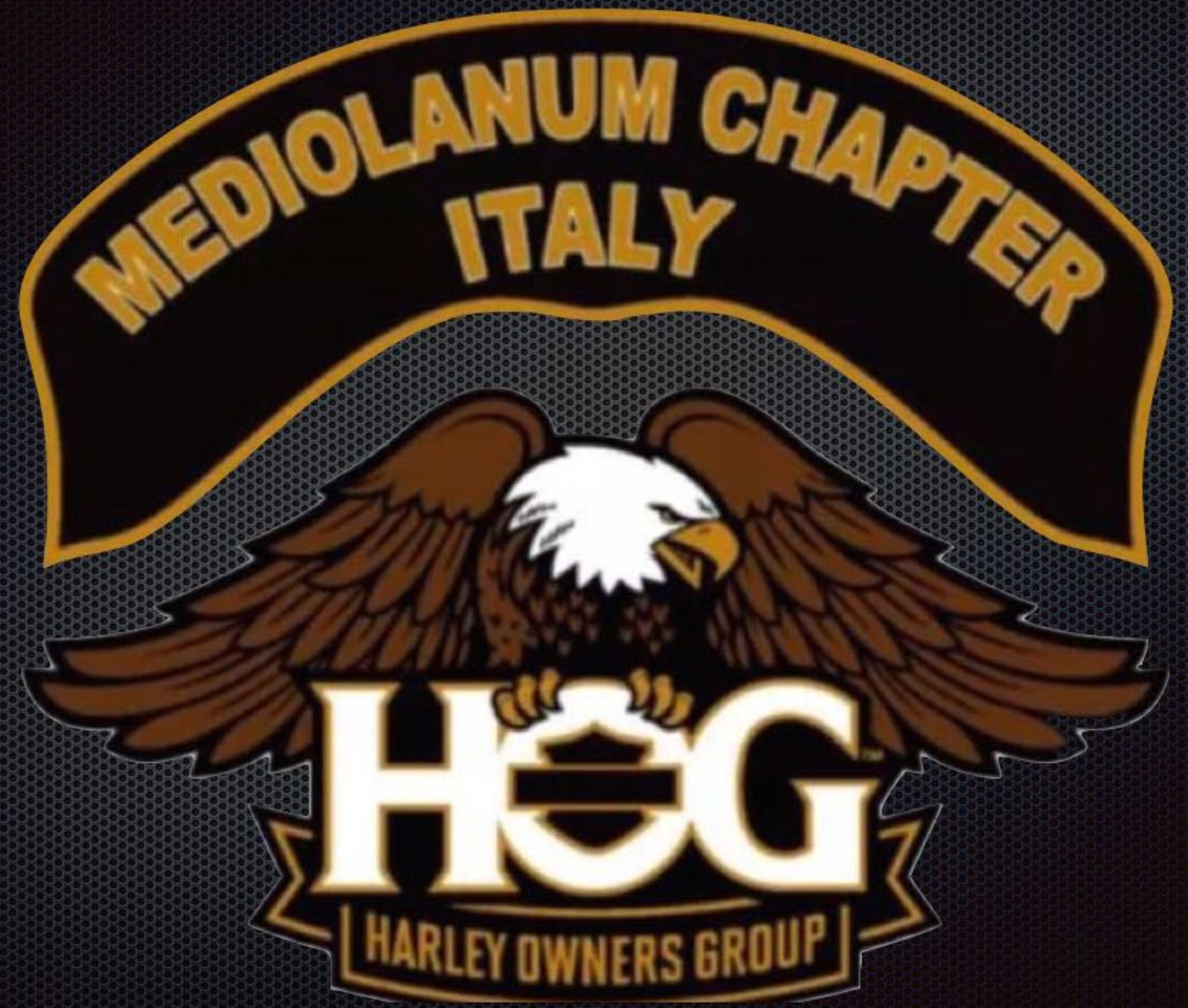 Mediolanum Chapter Italy HOG #9871